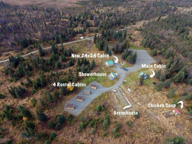 28750 Not So Far Street, Anchor Point, AK 99556 (MLS #17-18923) :: Channer Realty Group