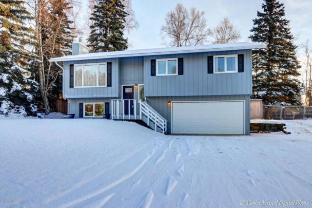 11017 Katlian Drive, Eagle River, AK 99577 (MLS #17-19015) :: Real Estate eXchange