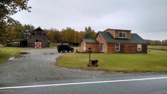 12821 E Scott Road, Palmer, AK 99645 (MLS #17-19057) :: Core Real Estate Group