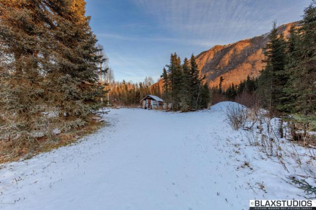 22113 Anthem Place, Chugiak, AK 99567 (MLS #17-19209) :: RMG Real Estate Experts