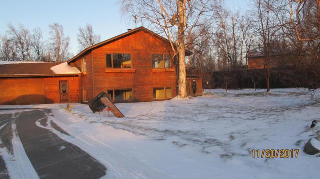 3401 E Naomi Avenue, Wasilla, AK 99654 (MLS #17-19247) :: Channer Realty Group