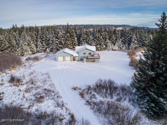 1170 Queets Circle, Homer, AK 99603 (MLS #17-19308) :: RMG Real Estate Experts