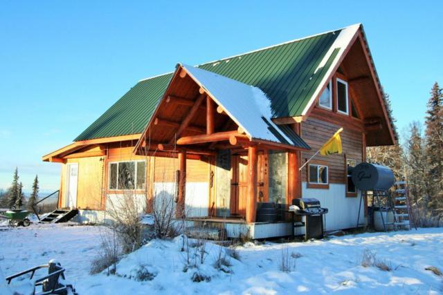 21770 E Big Mountain Drive, Talkeetna, AK 99676 (MLS #17-19447) :: Channer Realty Group