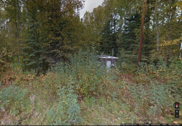 7031 W Island Lake Drive, Wasilla, AK 99623 (MLS #17-19635) :: RMG Real Estate Experts