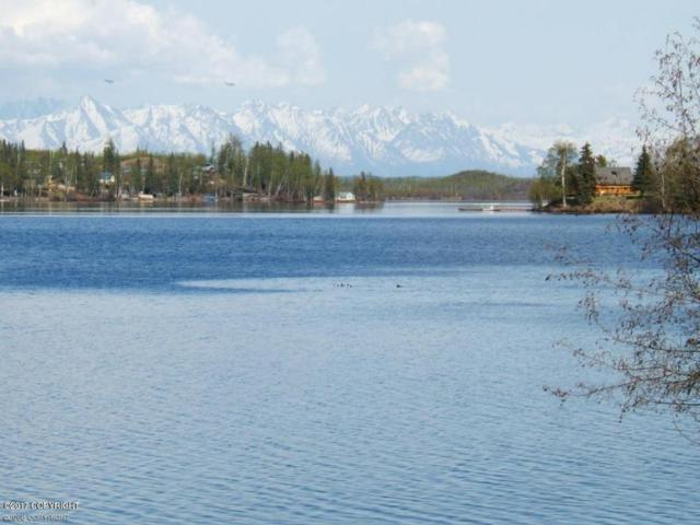 L1-23 Call Of The Wild, Big Lake, AK 99652 (MLS #17-19697) :: RMG Real Estate Experts