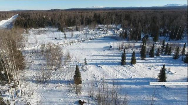 19506 E Montana Creek Road, Talkeetna, AK 99676 (MLS #17-19910) :: Northern Edge Real Estate, LLC
