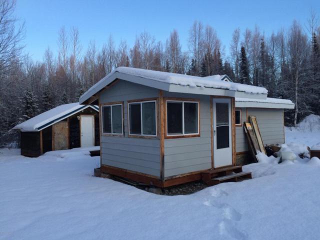 47087 S Anne Drive, Willow, AK 99688 (MLS #17-20026) :: Real Estate eXchange