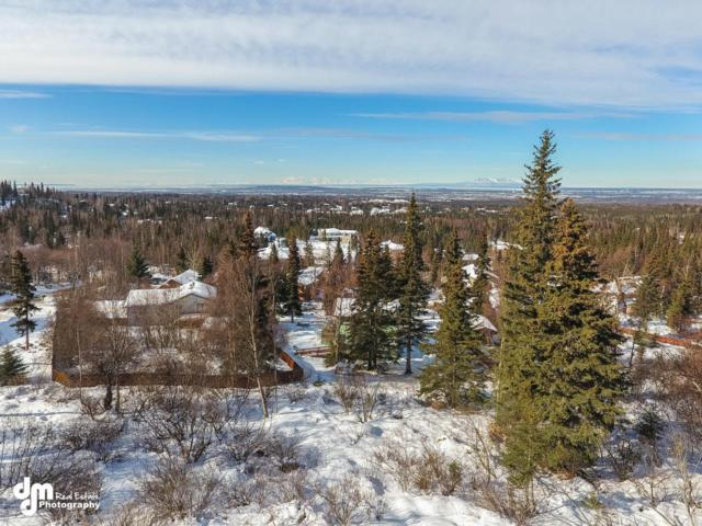 9740 Hillside Drive, Anchorage, AK 99507 (MLS #17-3790) :: Channer Realty Group