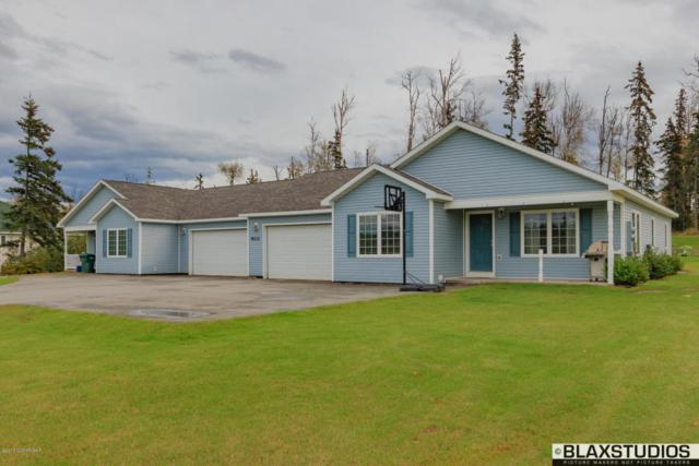 8212 W Donna Marie Lane, Wasilla, AK 99654 (MLS #17-6256) :: Channer Realty Group