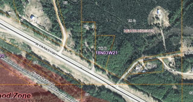 18189 W Parks Highway, Houston, AK 99694 (MLS #17-8733) :: RMG Real Estate Experts