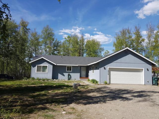 14779 W Fox Avenue, Big Lake, AK 99652 (MLS #17-8769) :: RMG Real Estate Experts