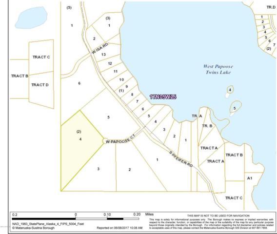 25749 W Papoose Court, Big Lake, AK 99652 (MLS #17-9034) :: RMG Real Estate Experts