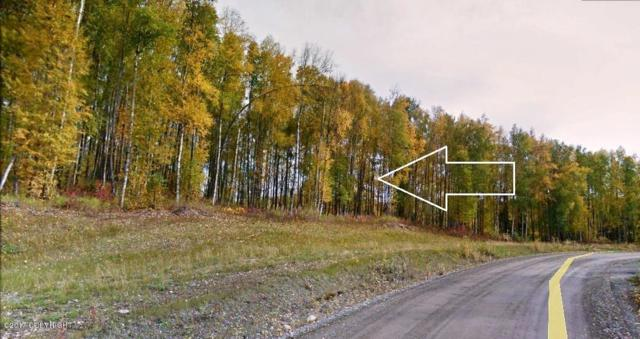 24411 W Honeybee Lake Drive, Willow, AK 99688 (MLS #17-9136) :: RMG Real Estate Experts