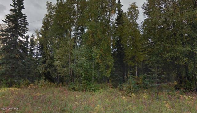 3980 N Greatland Circle, Wasilla, AK 99654 (MLS #17-9738) :: RMG Real Estate Experts