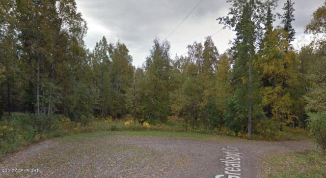 3930 N Greatland Circle, Wasilla, AK 99654 (MLS #17-9743) :: RMG Real Estate Experts