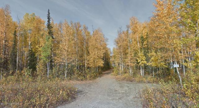 13374 Windsock, Willow, AK 99688 (MLS #17-9758) :: RMG Real Estate Experts