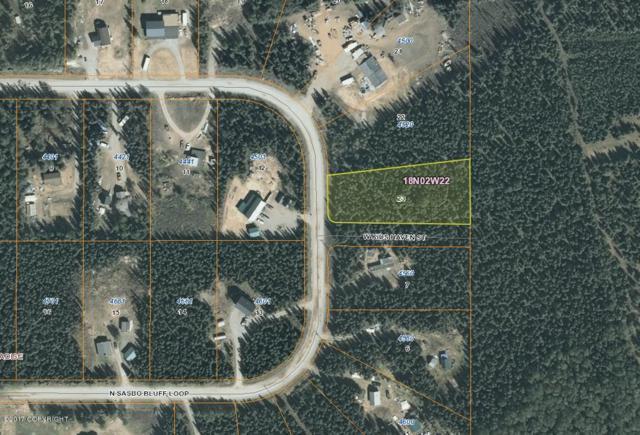 L23 Sasbo Bluff Loop, Wasilla, AK 99654 (MLS #17-9788) :: RMG Real Estate Experts