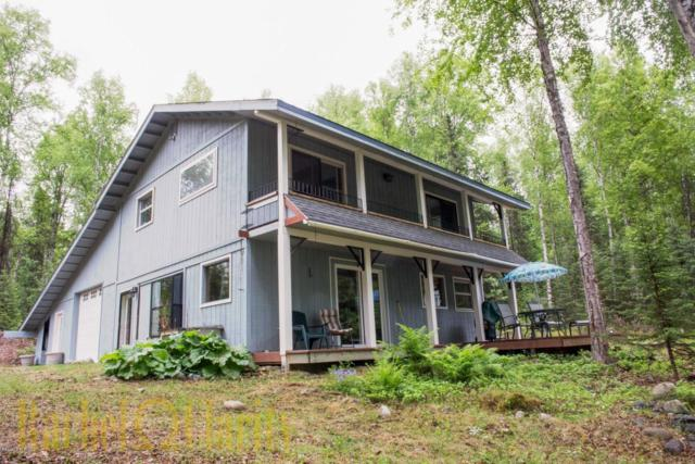 15130 E Question Lake Circle, Talkeetna, AK 99676 (MLS #17-9819) :: RMG Real Estate Experts