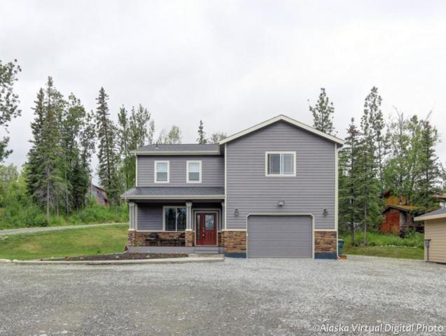 1360 Mulchatna Drive, Wasilla, AK 99654 (MLS #17-9916) :: Northern Edge Real Estate, LLC
