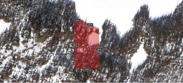 C001 No Road, Big Lake, AK 99652 (MLS #18-10109) :: RMG Real Estate Network | Keller Williams Realty Alaska Group