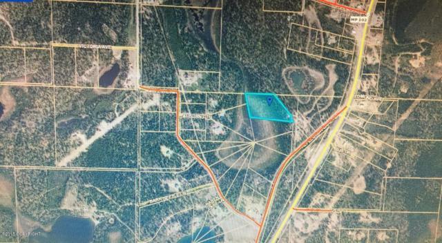 28915 Big Track Circle, Soldotna, AK 99669 (MLS #18-1013) :: Northern Edge Real Estate, LLC