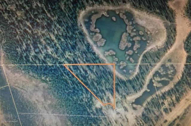 28935 Big Track Circle, Soldotna, AK 99669 (MLS #18-1014) :: RMG Real Estate Network   Keller Williams Realty Alaska Group