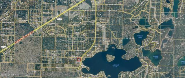 50115 Island Lake Road, Nikiski/North Kenai, AK 99611 (MLS #18-1015) :: Real Estate eXchange
