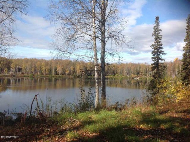 26620 W Nicky Circle, Willow, AK 99688 (MLS #18-10476) :: RMG Real Estate Network | Keller Williams Realty Alaska Group