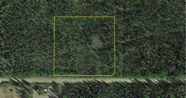 L5 Agriculture Road, Nenana, AK 99760 (MLS #18-10521) :: Core Real Estate Group