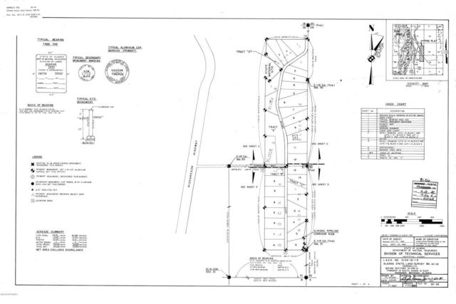 NHN Jeff Drive, Delta Junction, AK 99737 (MLS #18-10525) :: RMG Real Estate Network | Keller Williams Realty Alaska Group
