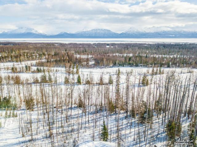 7696 S Frontier Drive, Wasilla, AK 99645 (MLS #18-10598) :: Core Real Estate Group