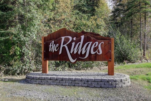 3905 W Isla Drive, Wasilla, AK 99623 (MLS #18-1062) :: Core Real Estate Group