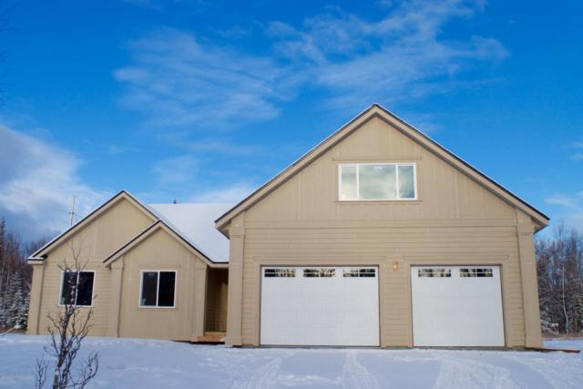 NHN W Jones Dr L5 B5, Wasilla, AK 99654 (MLS #18-1074) :: Core Real Estate Group