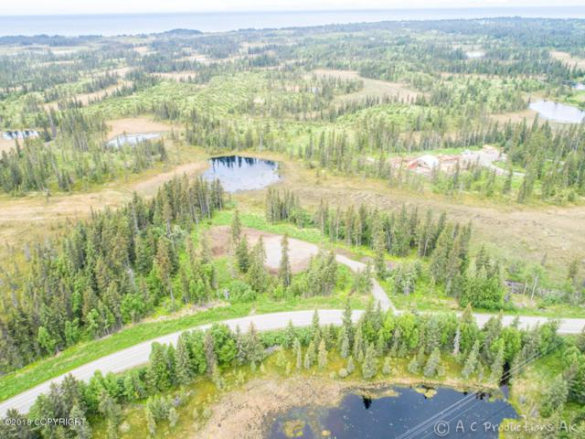 38289 Old Sterling Highway, Anchor Point, AK 99556 (MLS #18-11147) :: Core Real Estate Group