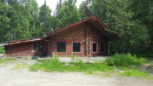 1873 S Clara Circle, Talkeetna, AK 99676 (MLS #18-11417) :: RMG Real Estate Network | Keller Williams Realty Alaska Group