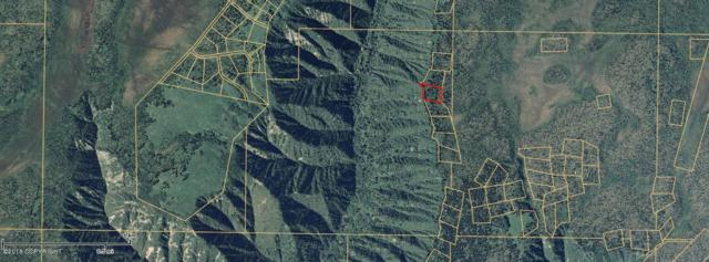 000 Ak Land Survey, Homer, AK 99603 (MLS #18-11650) :: The Huntley Owen Team