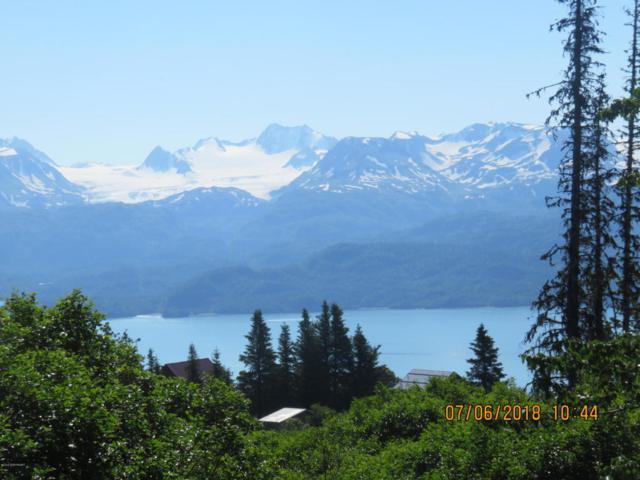35746 Cloverdale Circle, Homer, AK 99603 (MLS #18-11672) :: Real Estate Brokers of Alaska