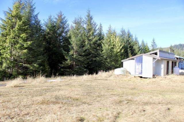 L3B15 Whale Pass, Remote, AK 99950 (MLS #18-11698) :: Core Real Estate Group