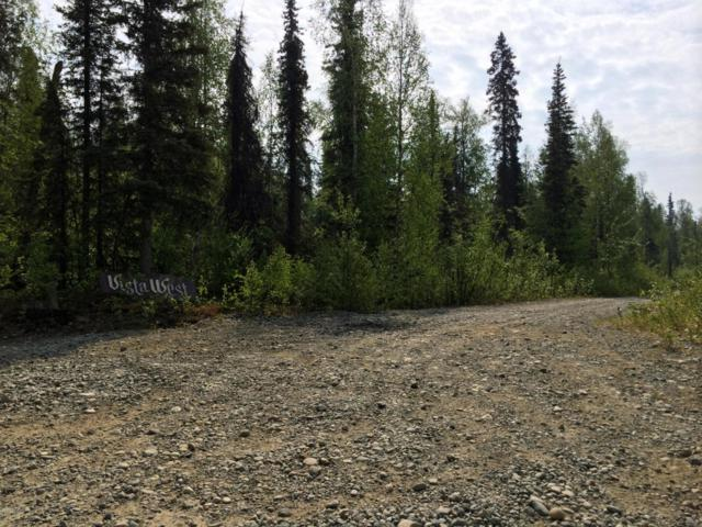 41517 S Moose Track Lane, Talkeetna, AK 99676 (MLS #18-12100) :: RMG Real Estate Network | Keller Williams Realty Alaska Group