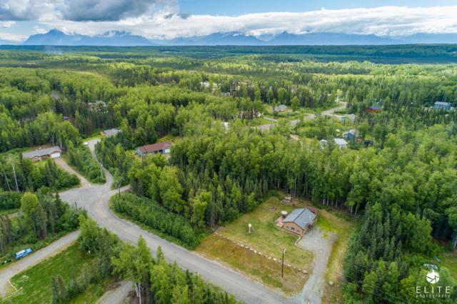 9930 W Tracy Lynn Circle, Wasilla, AK 99654 (MLS #18-12171) :: RMG Real Estate Network | Keller Williams Realty Alaska Group