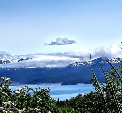 000 Old East End Road, Homer, AK 99603 (MLS #18-12186) :: Real Estate Brokers of Alaska
