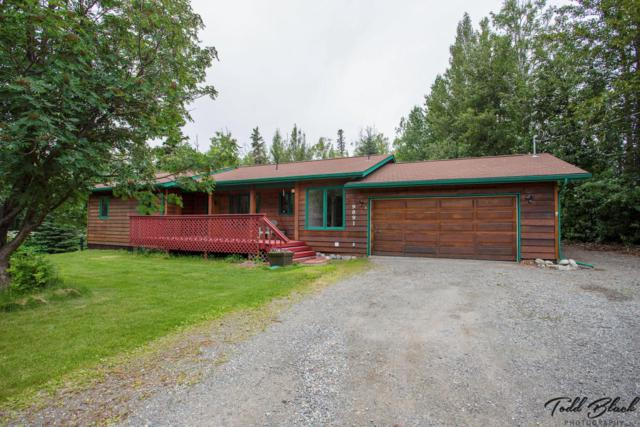 9891 E Puffin Drive, Palmer, AK 99645 (MLS #18-12204) :: Northern Edge Real Estate, LLC