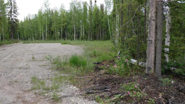 2930 Ciara Street, North Pole, AK 99705 (MLS #18-12261) :: Real Estate Brokers of Alaska
