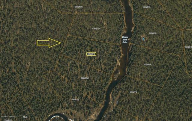 Tr O Mama Bear Lake, Talkeetna, AK 99676 (MLS #18-12280) :: RMG Real Estate Network | Keller Williams Realty Alaska Group