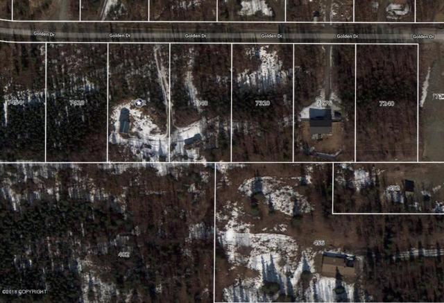 7348 W Golden Drive, Wasilla, AK 99654 (MLS #18-12376) :: Core Real Estate Group