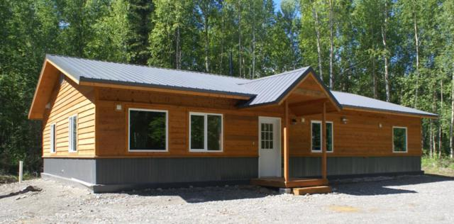 15918 E Jubilee Drive, Talkeetna, AK 99676 (MLS #18-12414) :: RMG Real Estate Network | Keller Williams Realty Alaska Group
