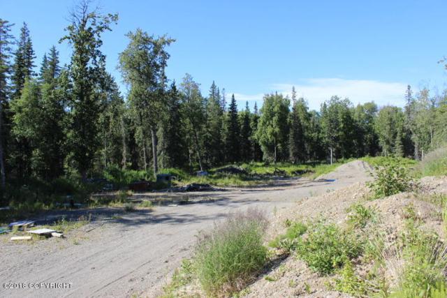 51802 Rediske Avenue, Nikiski/North Kenai, AK 99611 (MLS #18-12418) :: RMG Real Estate Network | Keller Williams Realty Alaska Group