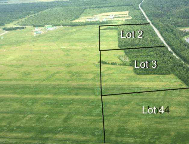 11 S Mackenzie, Wasilla, AK 99654 (MLS #18-12474) :: Core Real Estate Group