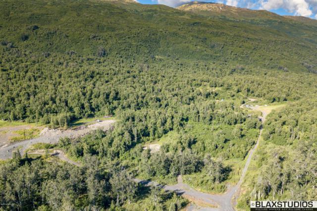 11414 S Back Home Drive, Palmer, AK 99645 (MLS #18-12574) :: Real Estate Brokers of Alaska
