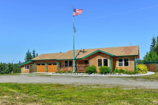 22680 Terrace Drive, Kasilof, AK 99610 (MLS #18-12605) :: Real Estate Brokers of Alaska